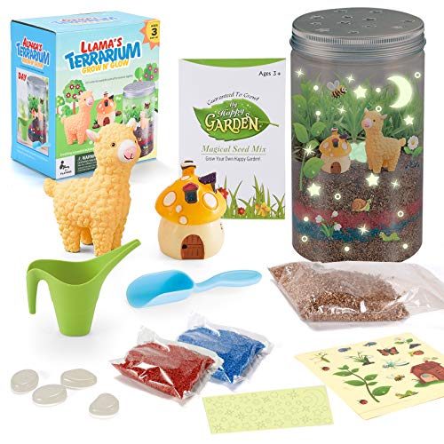 Sopu Terrarium Kit for Kids, Grow 'n Glow Terrarium Plant Growing Kit STEM Educational DIY Projects for Boys and Girls Age 6, 7, 8, 9, 10 Year Old