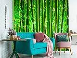 Papel Pintado para Pared Bosque de Bambú | Fotomural para Paredes | Mural | Papel Pintado | Varias Medidas 200 x 150 cm | Decoración comedores, Salones, Habitaciones.