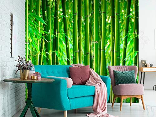 Fotomural Vinilo para Pared Bosque de Bambú | Fotomural para Paredes | Mural | Vinilo Decorativo | Varias Medidas 350 x 250 cm | Decoración comedores, Salones, Habitaciones.