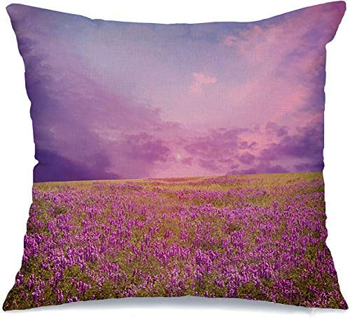 JKSA Funda de almohada decorativa Vanishing Pink Sunset Flower Field Moody Nature Freshness Parks Sun Outdoor Summer Design Funda de almohada de lino escénica para sofá cama Funda de almohada suave 18