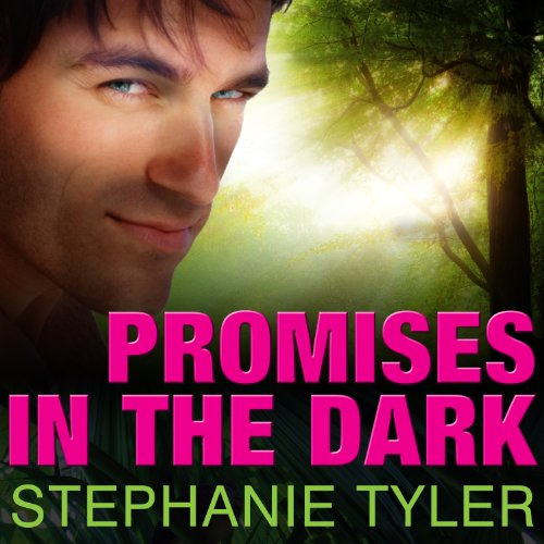 Promises in the Dark audiobook cover art