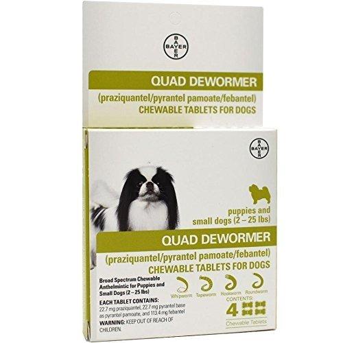 ExpertCare Quad Dewormer for Large Dogs