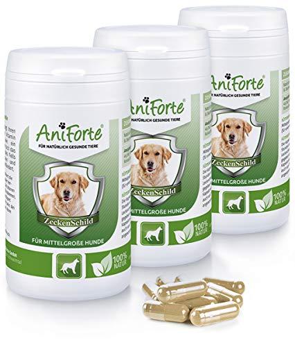 AniForte AntiGarrapatas para Perros Medianos entre 10 y 35 kg. 3 Botes de 60 cápsulas. Pack Ahorro. Producto Natural con Vitamina B para Anti Garrapatas.