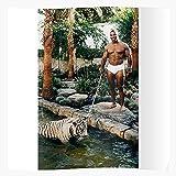 Badpakken Rogan Boxing Tyson MMA Mike UFC Hangover Joe The
