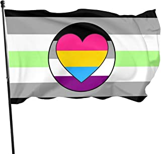 MINIOZE Agender Asexual Ace Pride Flag Panromantic Pan Themed Welcome Party Outdoor Outside Decorations Ornament Picks Home House Garden Yard Decor 3 X 5 Ft Small Flag