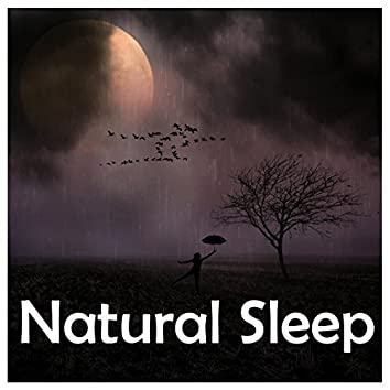 16 Baby Sleep Aid Sounds - Natural White Noise for Deep Relaxation
