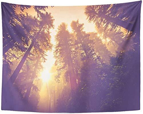California Misty Forest Trail Paisaje de secuoya mágica en un cálido paisaje de clasificación de colores vintage Tapiz forestal Tapiz colgante de pared 150x200cm