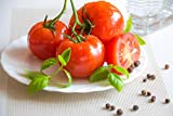 15 Seeds Kanner Hoell Tomato Seeds Non GMO Good for Sauce and Fresh Salads Good Slicer - Freezing...