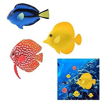 Best fake fish Reviews