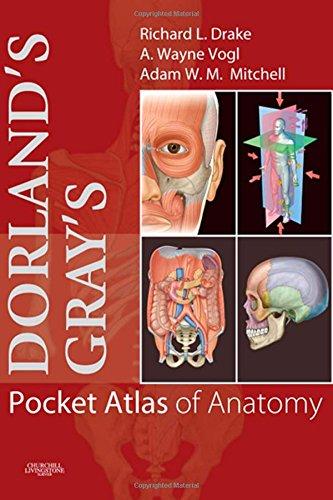 Dorland's/Gray's Pocket Atlas of Anatomy, 1e (Dorland's Medical Dictionary)の詳細を見る