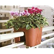 Medium Hanging Basket Planters balconies