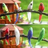 Puppenhaus Zubehör, Realistische Feder Papagei Vogel Modell 1/6 Miniatur Landschaft Home...