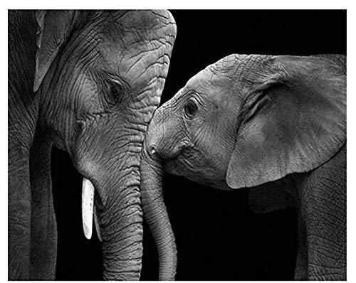 Blanco Y Negro Dos Elefantes Animales 1500 Piezas Rompecabezas Niños De 12 Años En Adelante Desafiante Juego Educativo Educativo para Adolescentes