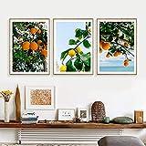 SHSYFBH Cuadros de Lienzo Estilo escandinavo Costa Naranjas Póster Fruta Arte de la Pared Cuadros para la Sala de Estar Decoración nórdica del hogar 3 Piezas 40x60cm sin Marco