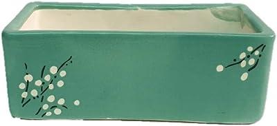 "Root Bridges 6.75"" Long Succulent Tray Ceramic Pot (Cyan)"