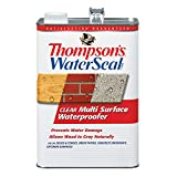 Thompsons Water Seal TH.024101-16 Clear Multi-Surface Waterproofer, 1-Gallon