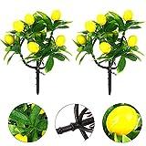 ANDEZX - 2 rami artificiali di limone, mini albero da frutta kumquat, decorazione per bonsai con 7 frutti in schiuma per ramo, piante finte ornamentali per soggiorno, ufficio, tavolo