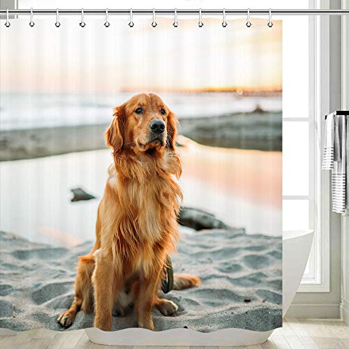 DYNH Dog Shower Curtain, Cute Golden Retriever Dog Sitting On The Beach Creative Animal Yellow Dog Shower Curtain, Funny Shower Curtain Hooks Include, 70X70 Inches