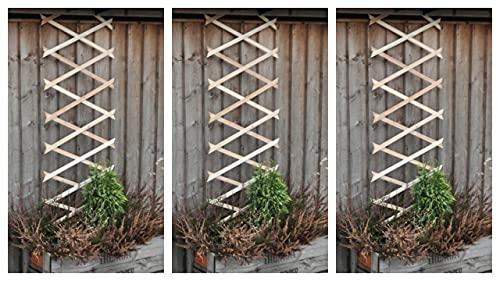 Garden Mile Set of 3 Expanding 6ft x 1ft Wooden Garden Trellis Outdoor...