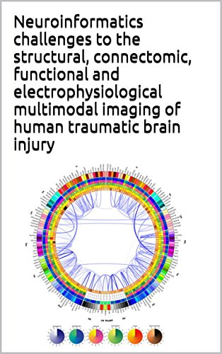 Neuroinformatics challenges to the structural, connectomic, functional and electrophysiological multimodal imaging of human traumatic brain injury (English Edition)