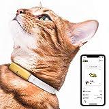 Catlog 食事や運動など愛猫の健康変化に気付けるスマート首輪 見守り 留守番 おしゃれ スタイリッシュ 軽い セーフティバックル iPhone & Android対応 (S, 猫鈴ゴールド×オフホワイト)