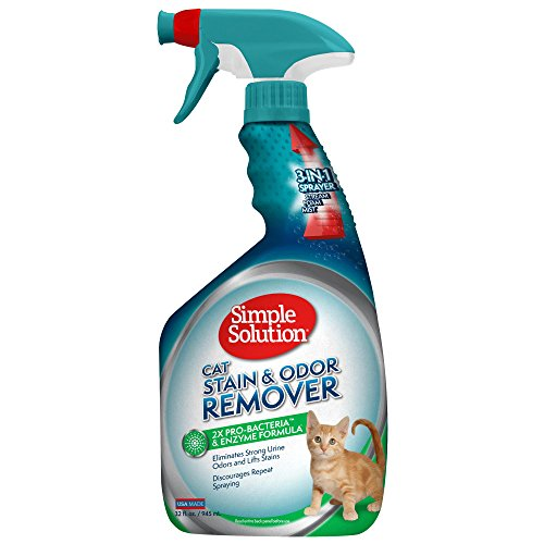 Bramton Co tache d'urine Odeur Remover pulv-risation 32 onces - 10627