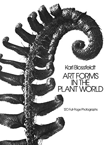 Art Forms in the Plant World: 120 Full-Page Photographs (Dover Pictorial Archive)の詳細を見る