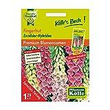Kölle's Beste! Blumensamen Fingerhut (Digitalis Excelsior)