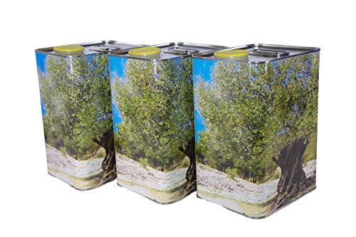 Zambonin agricoltura Contenitori per la conservazione dell'olio in Metallo Completi di Tappo (3, 3 Litri)