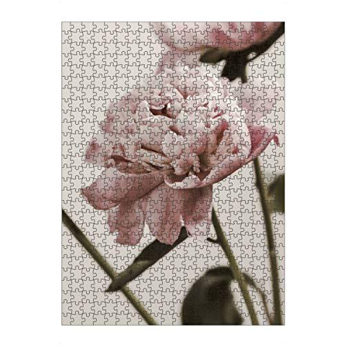 artboxONE Ravensburger-Puzzle L (500 Teile) Natur Pastel Pink Peonies - Puzzle Peonies Peony floral