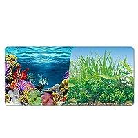 水族館ポスター 3D効果 バックスクリーン 両面壁紙 水槽の背景 水槽の飾り 水族植物とサンゴ礁のポスター (9051,30*82)