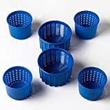Cheese making Set Prime Cheese molds 0.3L+0.6L Blue Original HOZPROM Cheesemaking equipment supplies Cow Goat Sheep Milk Cheese molds Cheese making cheese kit Rennet Cheesemaking Moldes para queso