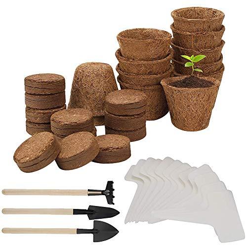 Abnaok Juego de 39 piezas de cultivo para plantas, bonsái Starter Kit con bandejas de plástico & etiquetas & tierra de cría y bonsái para los amantes de las plantas