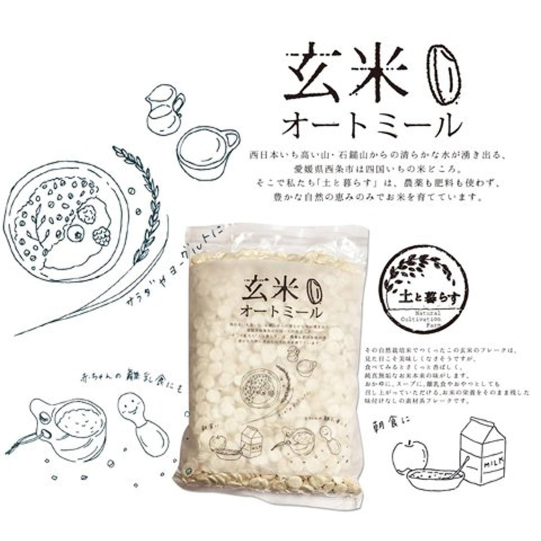 無農薬?自然栽培のお米から作ったシリアル 「玄米オートミール 2個セット」
