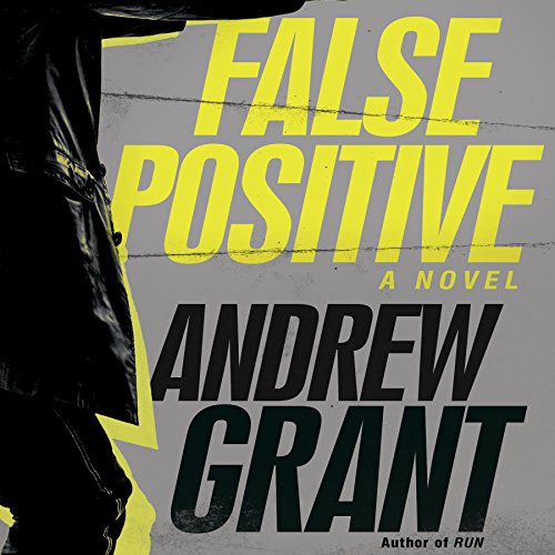 False Positive audiobook cover art