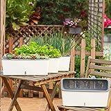 Creativo Orto Giardinaggio Vaso Balcone Vaso di Fiori Pavimento Rettangolare Autoassorbente Semplice Vaso di Fiori in Plastica