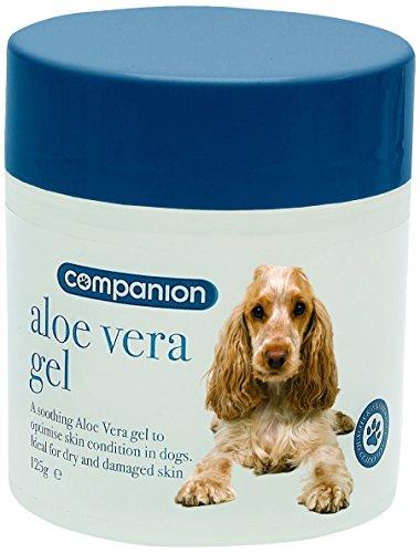 COMPANION Aloe Vera Gel – 125g