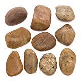 Baker Ross AW239 Painting Stones — Creative Art and Craft Supplies for Kids to Make, Personalise and Decorate (Pack of 8-10)
