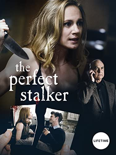 THE PERFECT STALKER product image