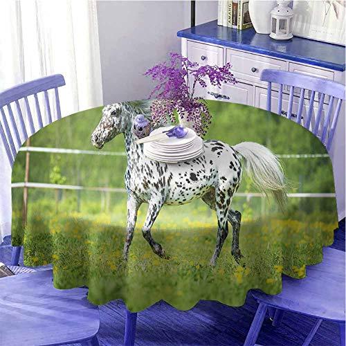 Mantel redondo con estampado de caballos Appaloosa Horse Runs Trot on The Pradow in Summer Time Farmhouse Rural Holiday Decoración Diámetro 71' Verde Negro Blanco