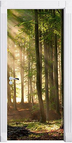 Stil.Zeit Möbel Alberi in Luce Come Una Carta da Parati Porta, Formato: 200x90cm, Telaio della Porta, Adesivi Porta, Porta Decorazione, autoadesivi del Portello