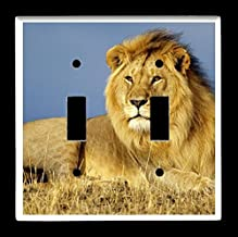 Double Toggle (2-toggle) Light Switch Plate Cover - African Wildlife Safari Animals - Lion