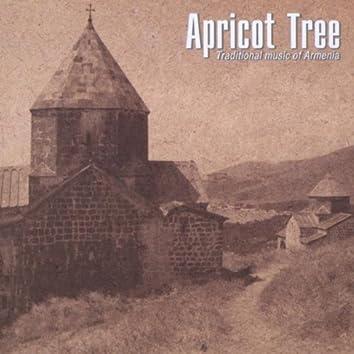 TRADITIONAL MUSIC OF ARMENIA