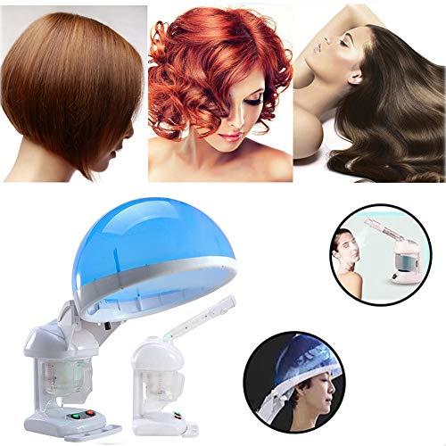 YWJH 2 in 1 Gesicht & Hair Steamer, 480W Professionelle Heizplatte Salon Heim-Gesichts-Haar Feuchtigkeit Steamer, 360 Drehbar Spray-Kopf, Home Spa Schönheitssalon Nutzung
