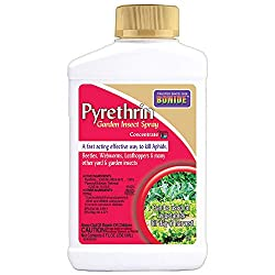 Bonide (BND857) - Pyrethrin Garden Insect Spray Mix