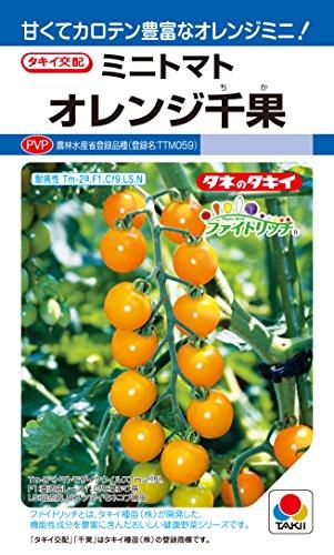 タキイ種苗 トマト オレンジ千果 ATM067