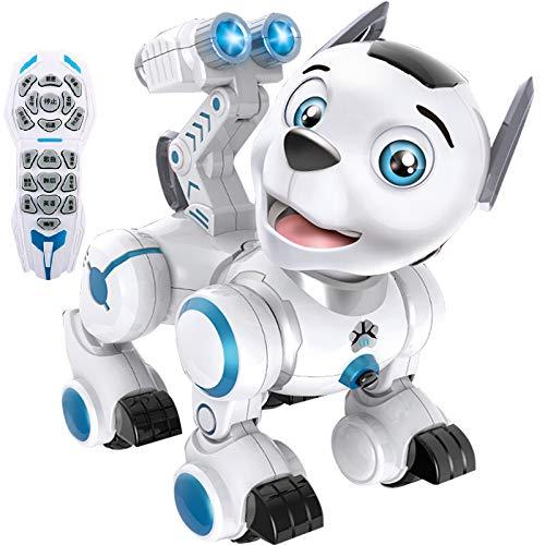 Perro robot resistente