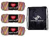 Red Heart Knitting Yarn Super Saver Pooling Papaya 3-Skein Factory Pack (Same Dyelot) E300P-8536 Bundle with 1 Artsiga Crafts Project Bag
