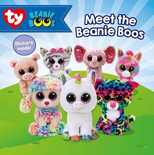 Meet the Beanie Boos