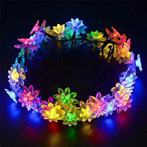 meilleures lumières de Noël solaires Lotus guirlande lumineuse solaire